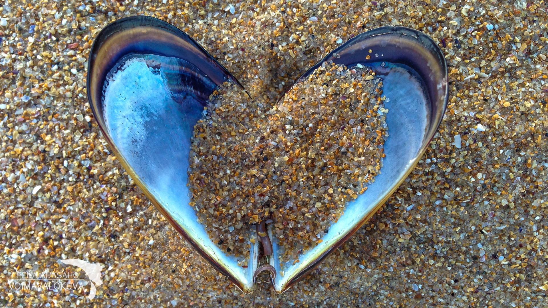 Sydän aamun auringonsäteet blogi