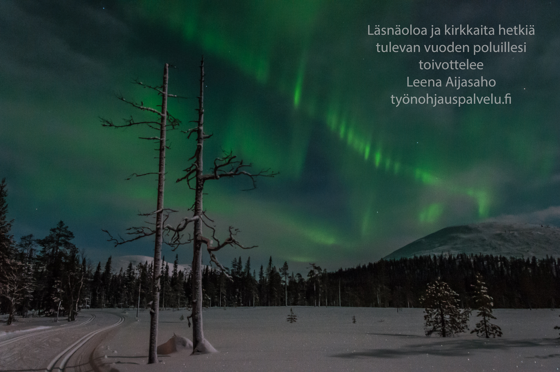 Revontulet joulu 2015 Leena Aijasaho